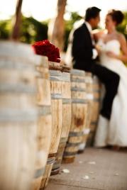 Wedding at Wilson Creek