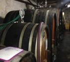 Barrel room in Alsace, France.